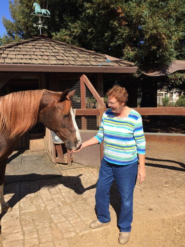 Linda McKell and Duke, her twenty-eight year old Morab.